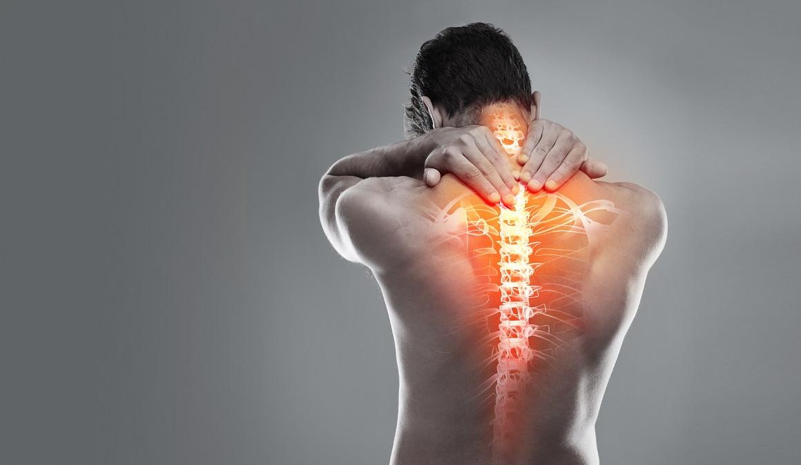 columna vertebral y sus patologías