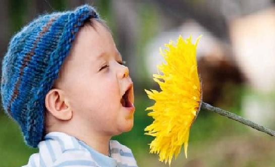 alergia y quiropráctica