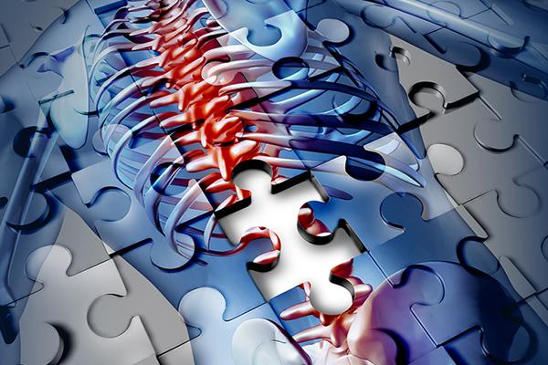 cuidado quiropractico, salud y prevención